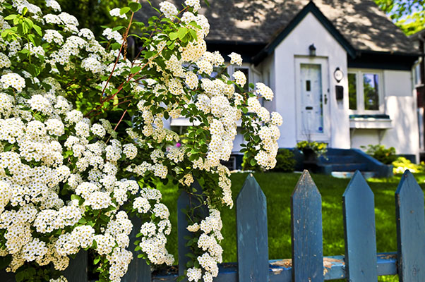 Fencing derby home security tips derwent - How to keep intruders out of your garden ...